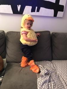 Emmy Duck